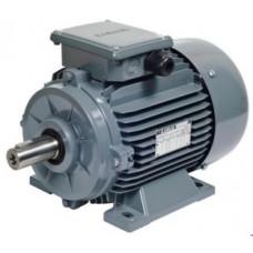 AGM 63 2a 0.18 kW 2k-3000 d-dk Gamak Trifaze Elektrik Motoru