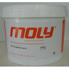 Moly C 6046 Vidalı A&C kompresör Yağı