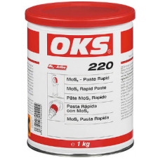 OKS 220 MoS2 Pasta Rapid(1 kg)