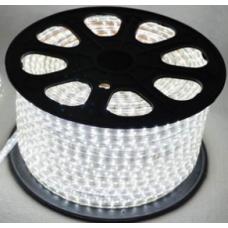 5050 Tek Çip 220 V AC 100 mt Beyaz Hortum Led