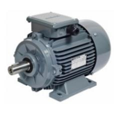 AGM 2E 100 L2 3 kw (4 HP) 3000 d-dk Gamak Trifaze Asenkron Elektrik Motoru