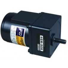 C1610-6-2B 6W 220V Helisel Dişli Redüktörlü Motor
