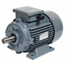 AGM2E 112 M6 2.2 kw ( 3 Hp) 1000 d-dk Gamak Trifaze Asenkron Elektrik Motoru