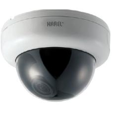 KAREL CKD420-A60 Dome Kamera