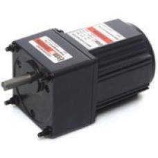 E8I25PXL 1 x 220 V 25 W ExceM redüktörlü AC Motor
