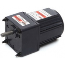 E8I25PXLTU 25 W 1 x 220 V Hız kontrollü ExceM AC redüktörlü Motor